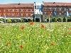 Abb. Tagungshotel nestor Hotel Ludwigsburg