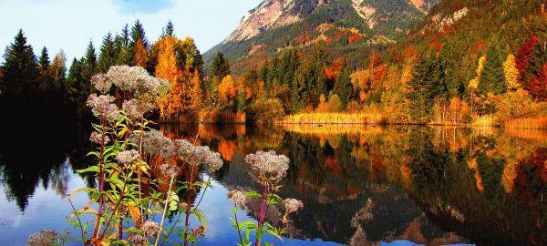 Abb. zu Allgäu - Pure Wanderlust in den Alpen – Goldener Spa & Gourmet- Herbst