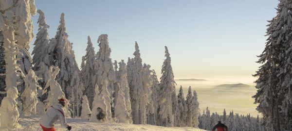 Abb. zu Vielseitiger Aktivurlaub im winterlichen Böhmerwald