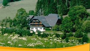 Abb. zu Artikel Tagungen entspannt genießen – in den Höhen des Hochschwarzwaldes